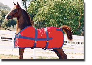 classic show horse sheet and tail bag