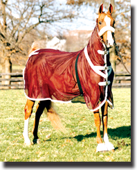 Horse blankets, sheets, hoods, bags, boots and other apparel.