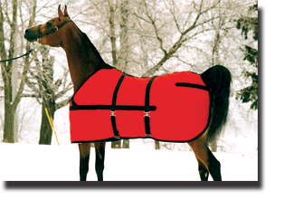 show coat horse blanket with hood